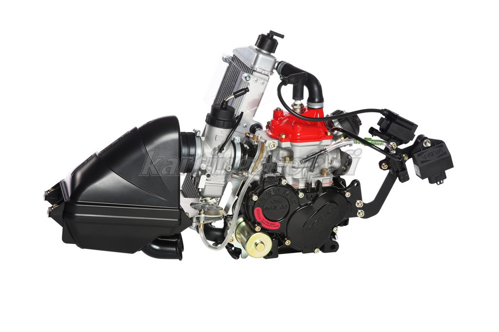 Rotax 125 MAX EVO