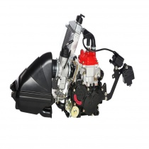 Rotax 125 MINI MAX EVO